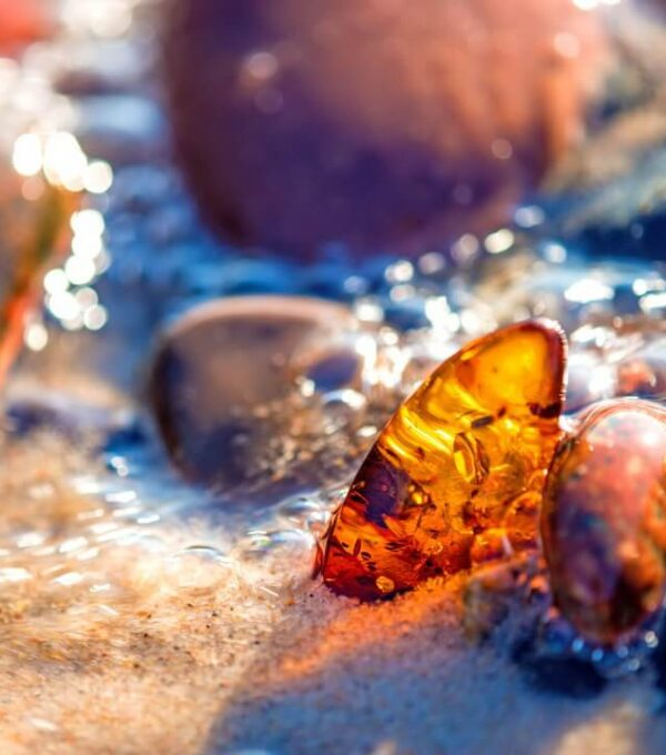 baltic-amber