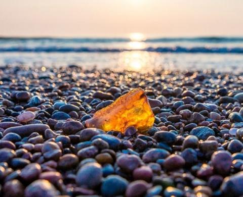 baltic amber 480x390 - Hổ phách vùng Baltic